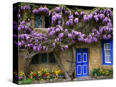 Cottage with Wisteria in Flower, Broadway, United Kingdom-Barbara Van Zanten-Stretched Canvas Print