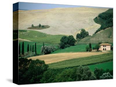 Tuscan Landscape Near San Gimignano, San Gimignano, Tuscany, Italy-Diana Mayfield-Stretched Canvas Print