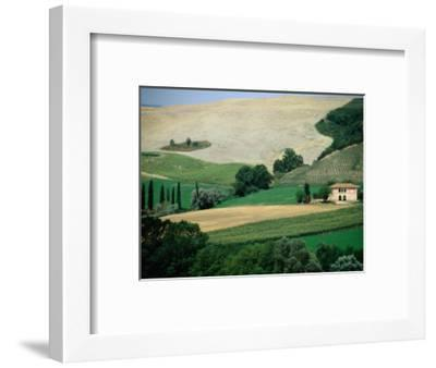 Tuscan Landscape Near San Gimignano, San Gimignano, Tuscany, Italy-Diana Mayfield-Framed Photographic Print