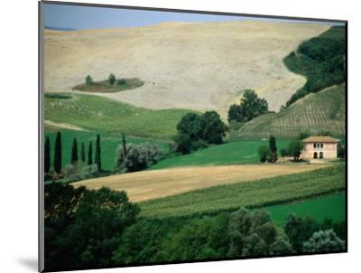 Tuscan Landscape Near San Gimignano, San Gimignano, Tuscany, Italy-Diana Mayfield-Mounted Photographic Print