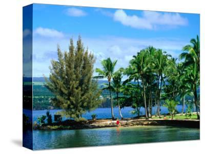 Coconut Island, a Small Island in Hilo Bay, Hawaii, USA-Ann Cecil-Stretched Canvas Print