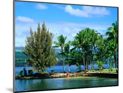 Coconut Island, a Small Island in Hilo Bay, Hawaii, USA-Ann Cecil-Mounted Photographic Print