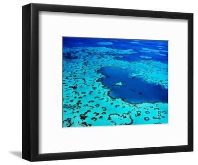 Aerial of Heart-Shaped Reef at Hardy Reef, Near Whitsunday Islands-Holger Leue-Framed Photographic Print