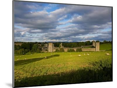 15th Century Walls around Augustinian Monestary, Kells, County Kilkenny, Ireland--Mounted Photographic Print