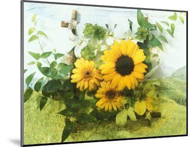 Sun Flowers And Green Vine Bouquet with Green Mountain Tops--Mounted Photographic Print