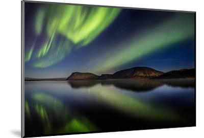 Aurora Borealis or Northern Lights at Lake Thingvallavatn, Thingvellir National Park--Mounted Photographic Print