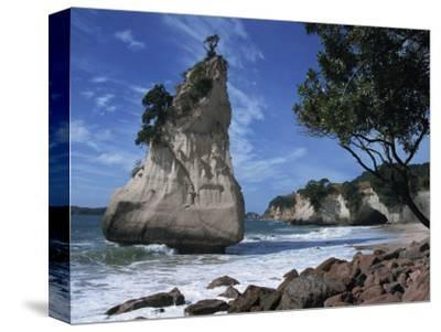 Te Horo Rock, Cathedral Cove, Coromandel Peninsula, North Island, New Zealand, Pacific-Dominic Harcourt-webster-Stretched Canvas Print