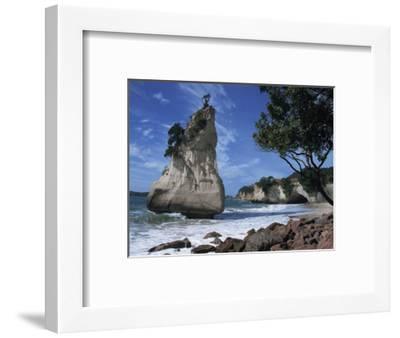 Te Horo Rock, Cathedral Cove, Coromandel Peninsula, North Island, New Zealand, Pacific-Dominic Harcourt-webster-Framed Photographic Print