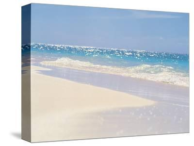 Water's Edge--Stretched Canvas Print