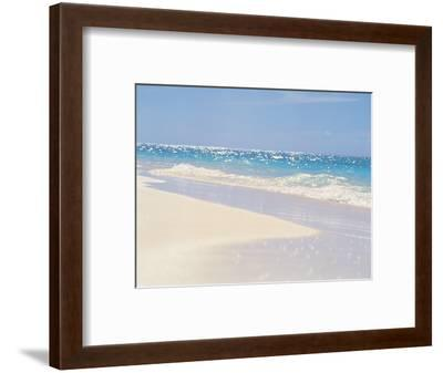 Water's Edge--Framed Photographic Print