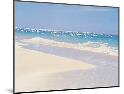 Water's Edge--Mounted Photographic Print