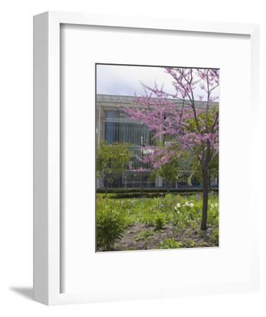 Lurie Garden and Art Institute of Chicago, Millennium Park, Chicago, Illinois, USA-Amanda Hall-Framed Photographic Print