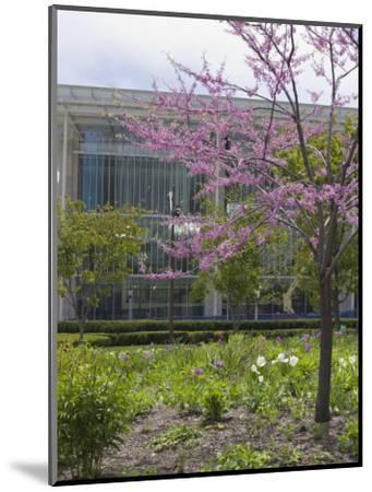 Lurie Garden and Art Institute of Chicago, Millennium Park, Chicago, Illinois, USA-Amanda Hall-Mounted Photographic Print