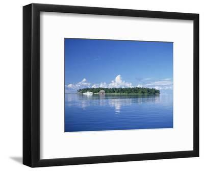 Tropical Island with Palm Trees, Surrounded by the Sea in the Maldive Islands, Indian Ocean-Tovy Adina-Framed Photographic Print