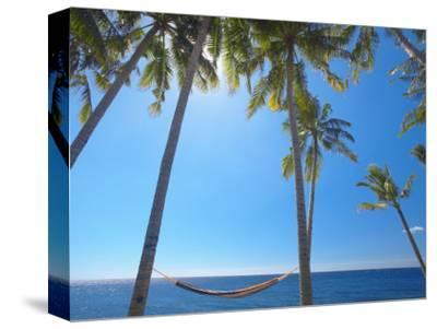 Hammock Between Palm Trees on Beach, Bali, Indonesia, Southeast Asia, Asia-Sakis Papadopoulos-Stretched Canvas Print