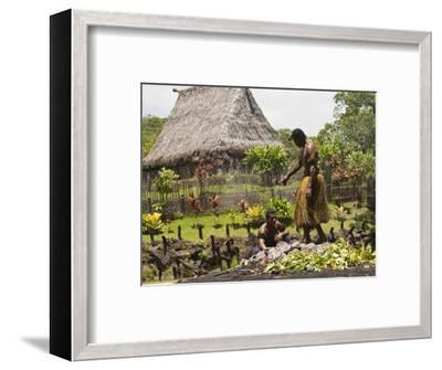 Polynesian Cultural Center, Viti Levu, Fiji, South Pacific, Pacific-Michael DeFreitas-Framed Photographic Print