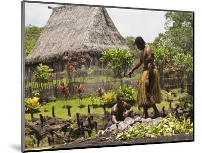 Polynesian Cultural Center, Viti Levu, Fiji, South Pacific, Pacific-Michael DeFreitas-Mounted Photographic Print