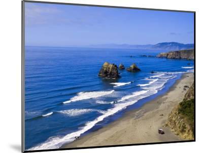Coastline Near Crescent City, Northern California, United States of America, North America-Michael DeFreitas-Mounted Photographic Print