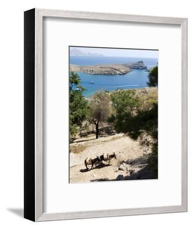Two Donkeys in the St. Paul Bay, Lindos, Rhodes, Dodecanese, Greek Islands, Greece, Europe-Oliviero Olivieri-Framed Photographic Print