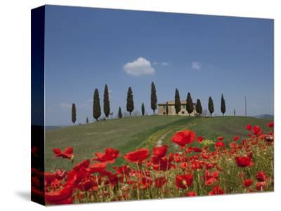 Country Home and Poppies, Near Pienza, Tuscany, Italy, Europe-Angelo Cavalli-Stretched Canvas Print