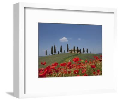 Country Home and Poppies, Near Pienza, Tuscany, Italy, Europe-Angelo Cavalli-Framed Photographic Print
