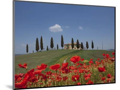 Country Home and Poppies, Near Pienza, Tuscany, Italy, Europe-Angelo Cavalli-Mounted Photographic Print