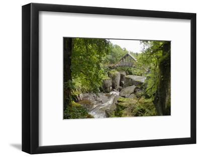 Bracklinn Falls, Callander, Loch Lomond and Trossachs National Park, Stirling, Scotland, UK-Gary Cook-Framed Photographic Print
