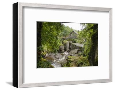 Bracklinn Falls, Callander, Loch Lomond and Trossachs National Park, Stirling, Scotland, UK-Gary Cook-Framed Photographic Print
