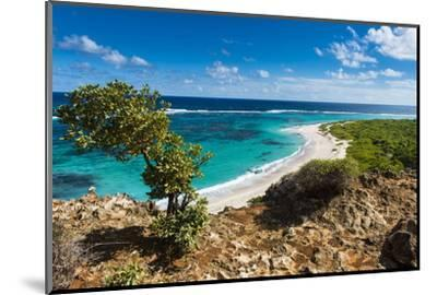 View over the Turquoise Waters of Barbuda-Michael Runkel-Mounted Photographic Print