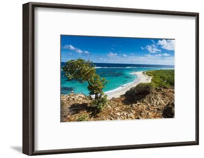View over the Turquoise Waters of Barbuda-Michael Runkel-Framed Photographic Print