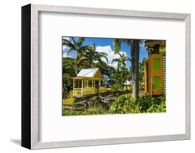 Romney Manor on St. Kitts-Michael Runkel-Framed Photographic Print