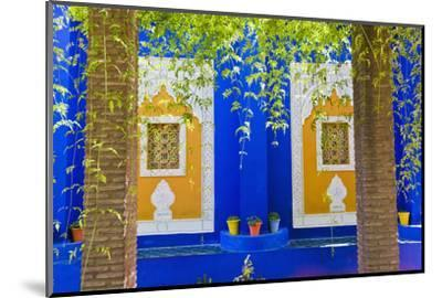 Majorelle Gardens (Gardens of Yves Saint-Laurent), Marrakech, Morocco, North Africa, Africa-Matthew Williams-Ellis-Mounted Photographic Print