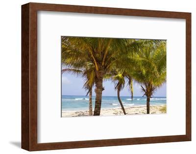 Long Bay, East Coast, Portland Parish, Jamaica, West Indies, Caribbean, Central America-Doug Pearson-Framed Photographic Print