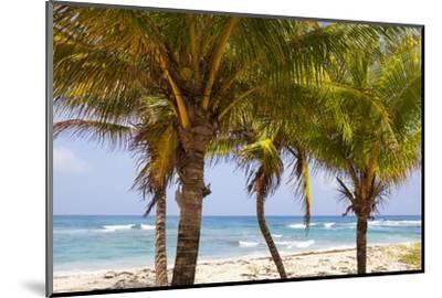 Long Bay, East Coast, Portland Parish, Jamaica, West Indies, Caribbean, Central America-Doug Pearson-Mounted Photographic Print