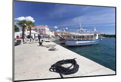 Excursion Boat at the Promenade at the Harbour of Porec, Istra, Croatia, Europe-Markus Lange-Mounted Photographic Print