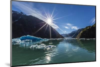 Calved Glacier Ice in Tracy Arm-Ford's Terror Wilderness Area-Michael Nolan-Mounted Photographic Print