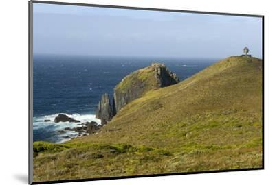 The Albatross Monument at Cape Horn, Isla De Cabo De Hornos, Tierra Del Fuego, Chile, South America-Tony Waltham-Mounted Photographic Print