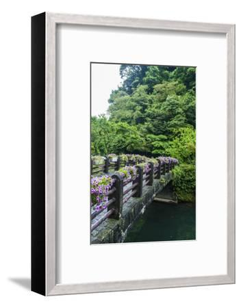 Stone Bridge with Flowers in Seogwipo-Michael-Framed Photographic Print