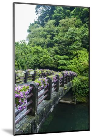 Stone Bridge with Flowers in Seogwipo-Michael-Mounted Photographic Print