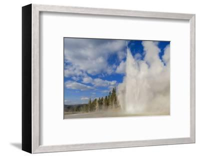 Lone Observer Watches Grand Geyser Erupt, Upper Geyser Basin, Yellowstone National Park-Eleanor Scriven-Framed Photographic Print