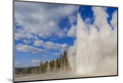 Lone Observer Watches Grand Geyser Erupt, Upper Geyser Basin, Yellowstone National Park-Eleanor Scriven-Mounted Photographic Print