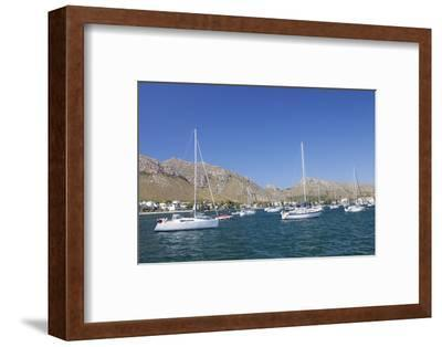 View over the Marina to Port De Pollenca, Pollenca, Majorca (Mallorca)-Markus Lange-Framed Photographic Print
