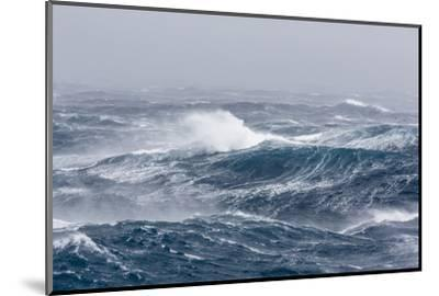 Gale Force Westerly Winds Build Large Waves in the Drake Passage, Antarctica, Polar Regions-Michael Nolan-Mounted Photographic Print