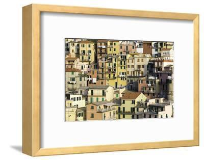 Manarola, Cinque Terre, UNESCO World Heritage Site, Liguria, Italy, Europe-Gavin Hellier-Framed Photographic Print