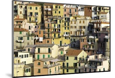 Manarola, Cinque Terre, UNESCO World Heritage Site, Liguria, Italy, Europe-Gavin Hellier-Mounted Photographic Print