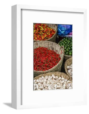 Can Tho Market, Mekong Delta, Vietnam, Indochina, Southeast Asia, Asia-Yadid Levy-Framed Photographic Print
