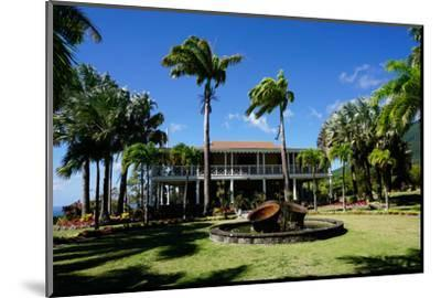 Nevis Botanical Garden, Nevis, St. Kitts and Nevis-Robert Harding-Mounted Photographic Print