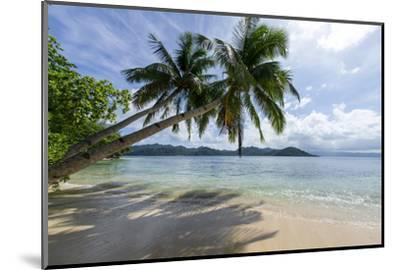 Tropical Island Beach at Matangi Island Resort, Vanua Levu, Fiji, Pacific-Louise Murray-Mounted Premium Photographic Print