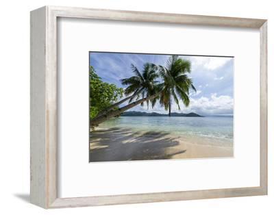 Tropical Island Beach at Matangi Island Resort, Vanua Levu, Fiji, Pacific-Louise Murray-Framed Premium Photographic Print