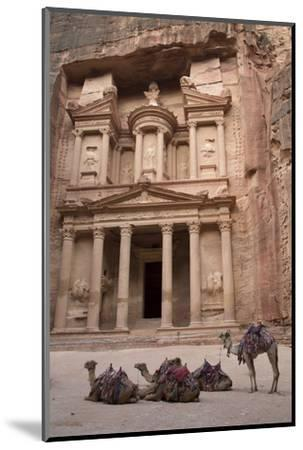 Camels in Front of the Treasury, Petra, Jordan, Middle East-Richard Maschmeyer-Mounted Photographic Print